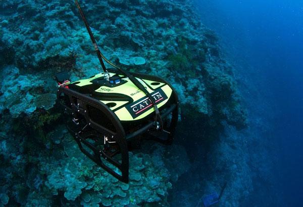 korallen-Great-Barrier-Reef2