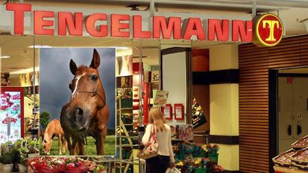 pferde-tengelmann