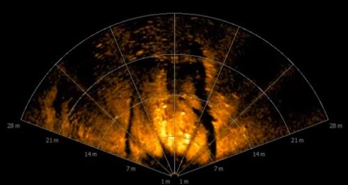 sonar-aufnahme-objekt