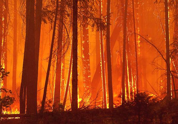 waldbrand-kalifornien
