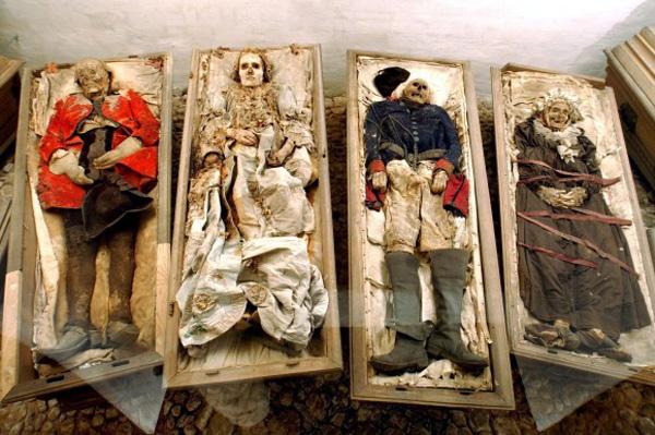 Mumien-von-norman