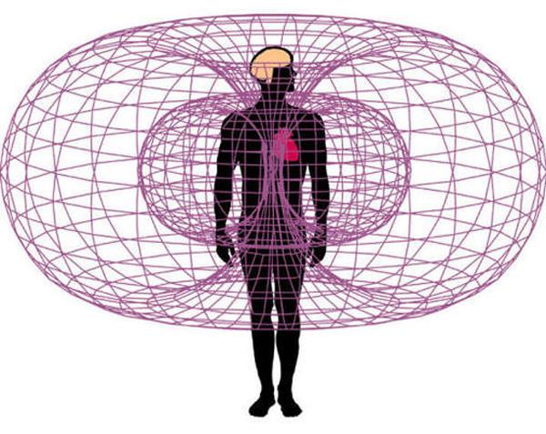 torus-heilige-geometrie