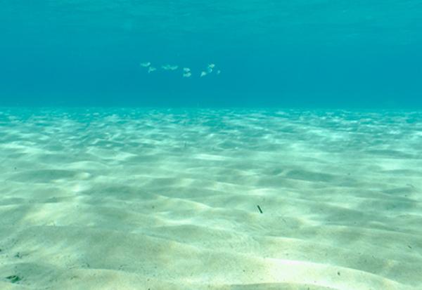 Meer Süßwasser